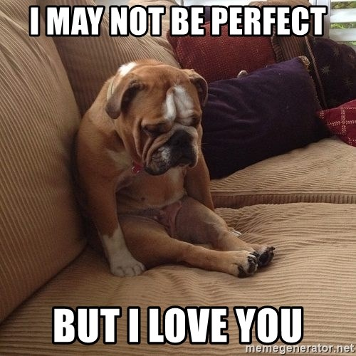 I May Not Be Perfect But I Love You Sad Dogs Meme Generator