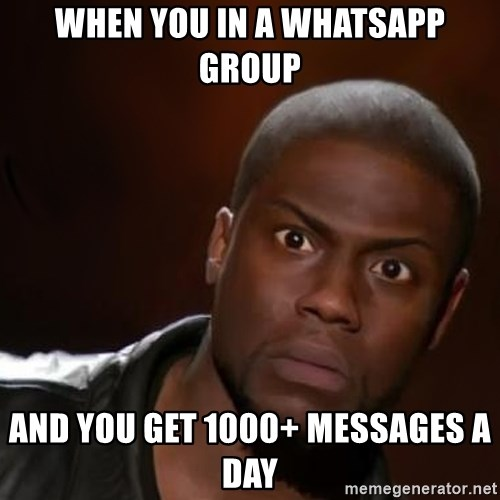 kevin hart nigga - WHEN YOU IN A WHATSAPP GROUP AND YOU GET 1000+ MESSAGES A DAY
