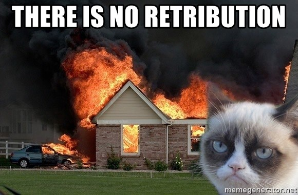 grumpy cat 8 - There is no retribution