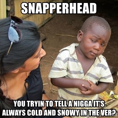 Skeptical 3rd World Kid - snapperhead you tryin to tell a nigga it's always cold and snowy in the ver?