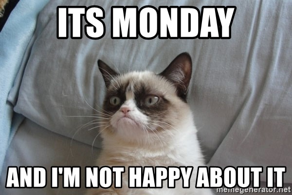 Grumpy cat 5 - Its Monday And I'm not happy about it