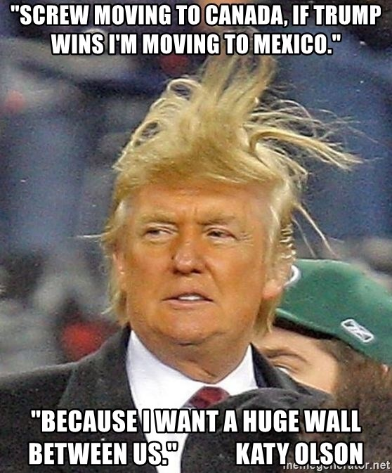 """Donald Trump wild hair - """"Screw moving to Canada, If Trump wins I'm moving to Mexico."""" """"Because I want a huge wall between us.""""            Katy Olson"""