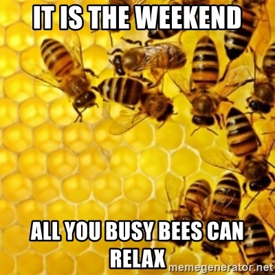 Honeybees - IT IS THE WEEKEND ALL YOU BUSY BEES CAN RELAX