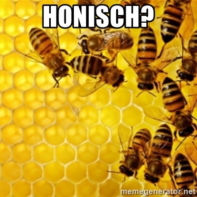 Honeybees - Honisch?