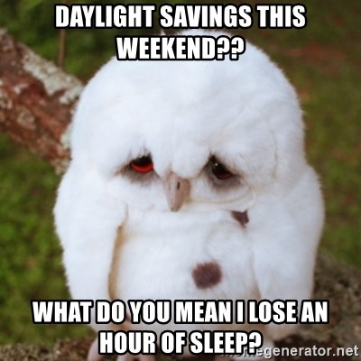 Sad Owl Baby - Daylight savings this weekend?? What do you mean I lose an hour of sleep?