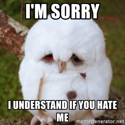 Sad Owl Baby - I'm sorry I understand if you hate me
