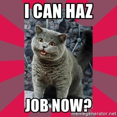 I can haz - I can haz job now?