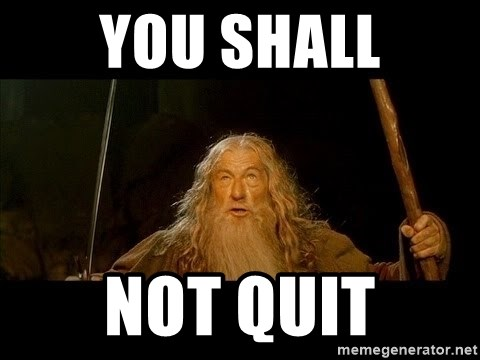 you shall not pass gandalf the gray - You Shall Not Quit