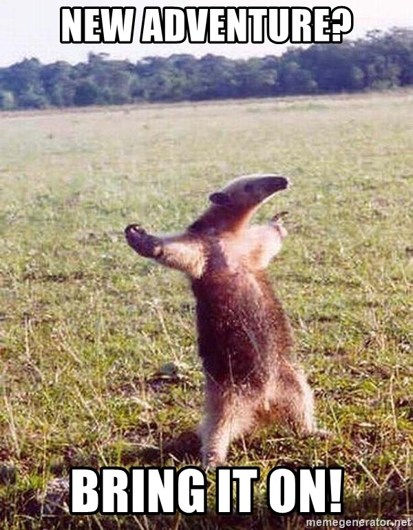 Anteater - New Adventure? Bring it on!