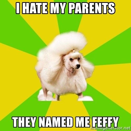 I hate my parents they named me Feffy - Pretentious Theatre