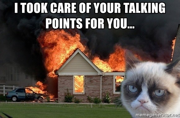 grumpy cat 8 - I TOOK CARE OF YOUR TALKING POINTS FOR YOU...