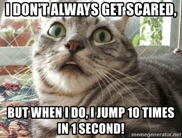 scared cat - I don't always get scared, But when I do, i jump 10 times in 1 second!