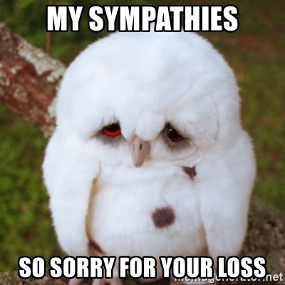 My Sympathies So Sorry For Your Loss Sad Owl Baby Meme Generator