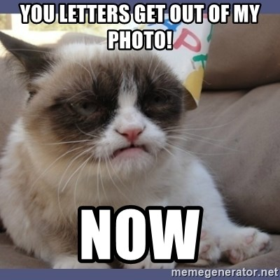 Birthday Grumpy Cat - you letters get out of my photo! now