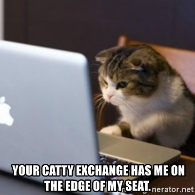 Your Catty Exchange Has Me On The Edge Of My Seat Cat Computer