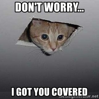 Ceiling cat - Don't worry... I got you covered