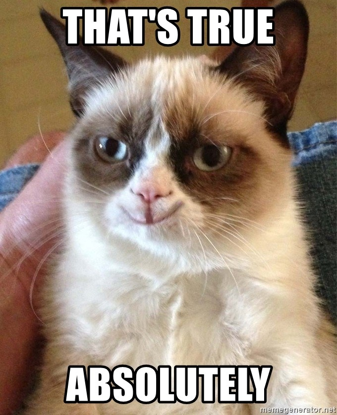 Happy Grumpy Cat 2 - That's true Absolutely