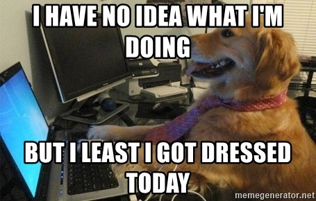 I have no idea what I'm doing - Dog with Tie - I have no idea what I'm doing But I least I got dressed today