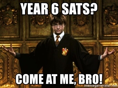 Image result for year 6 sats come at me bro