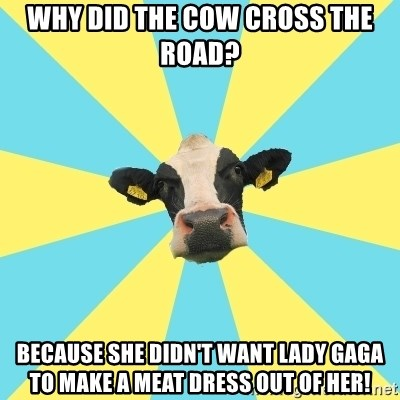 why did the cow cross the road