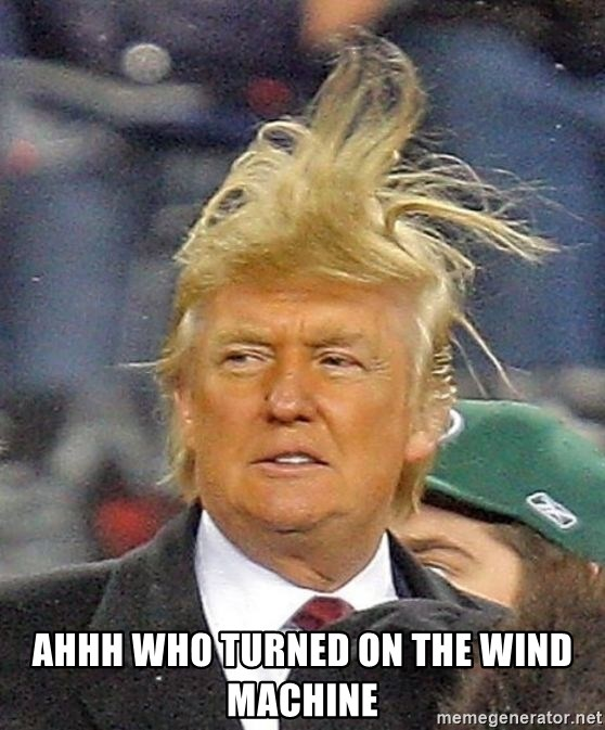 Donald Trump wild hair - ahhh who turned on the wind machine