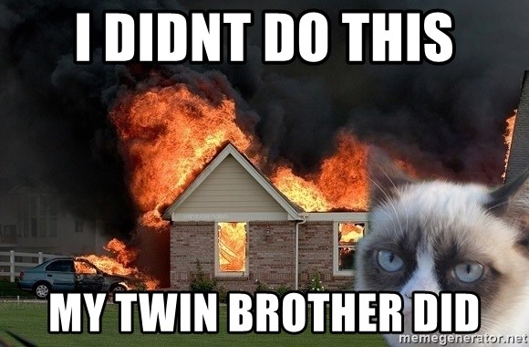 grumpy cat 8 - I didnt do this my twin brother did