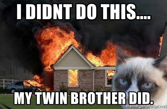 grumpy cat 8 - I didnt do this.... my twin brother did.