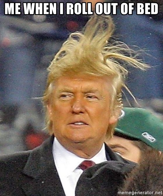 Donald Trump wild hair - Me when I roll out of bed