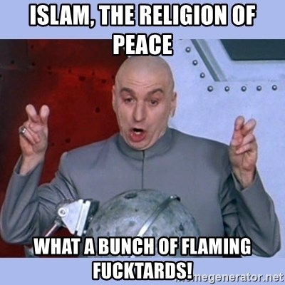 Dr Evil meme - Islam, the religion of Peace What a bunch of flaming fucktards!