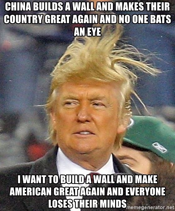 Donald Trump wild hair - China builds a wall and makes their country great again and no one bats an eye I want to build a wall and make american great again and everyone loses their minds