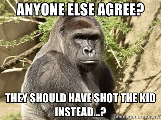 anyone else agree they should have shot the kid instead