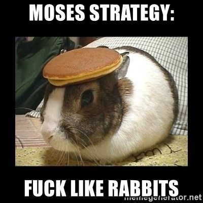 Moses Strategy Fuck Like Rabbits Bunny With Pancake On Head