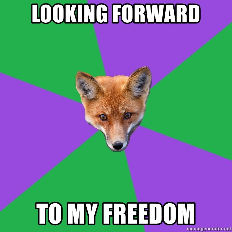 Anthropology Major Fox - Looking forward to my freedom