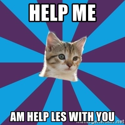 Autistic Kitten - help me am help les with you