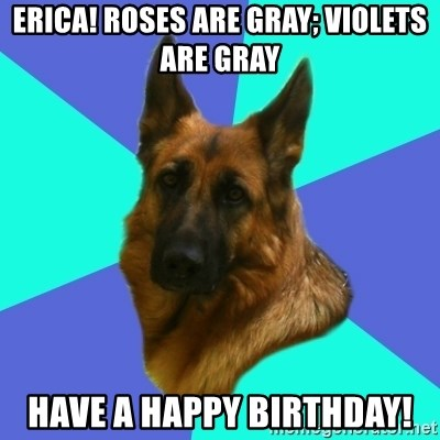 German shepherd - Erica! Roses are gray; violets are gray Have a Happy Birthday!
