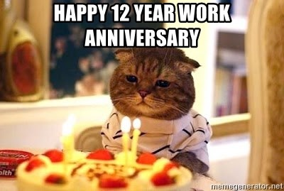 Happy 12 year work anniversary birthday cat meme generator