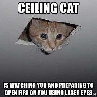 CEILING CAT IS WATCHING YOU AND PREPARING TO OPEN FIRE ON YOU USING
