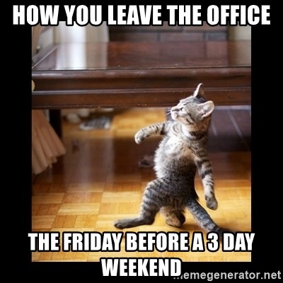 cat swag - How you leave the office The friday before a 3 day weekend