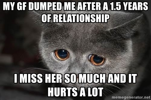 My Gf Dumped Me After A 15 Years Of Relationship I Miss Her So Much