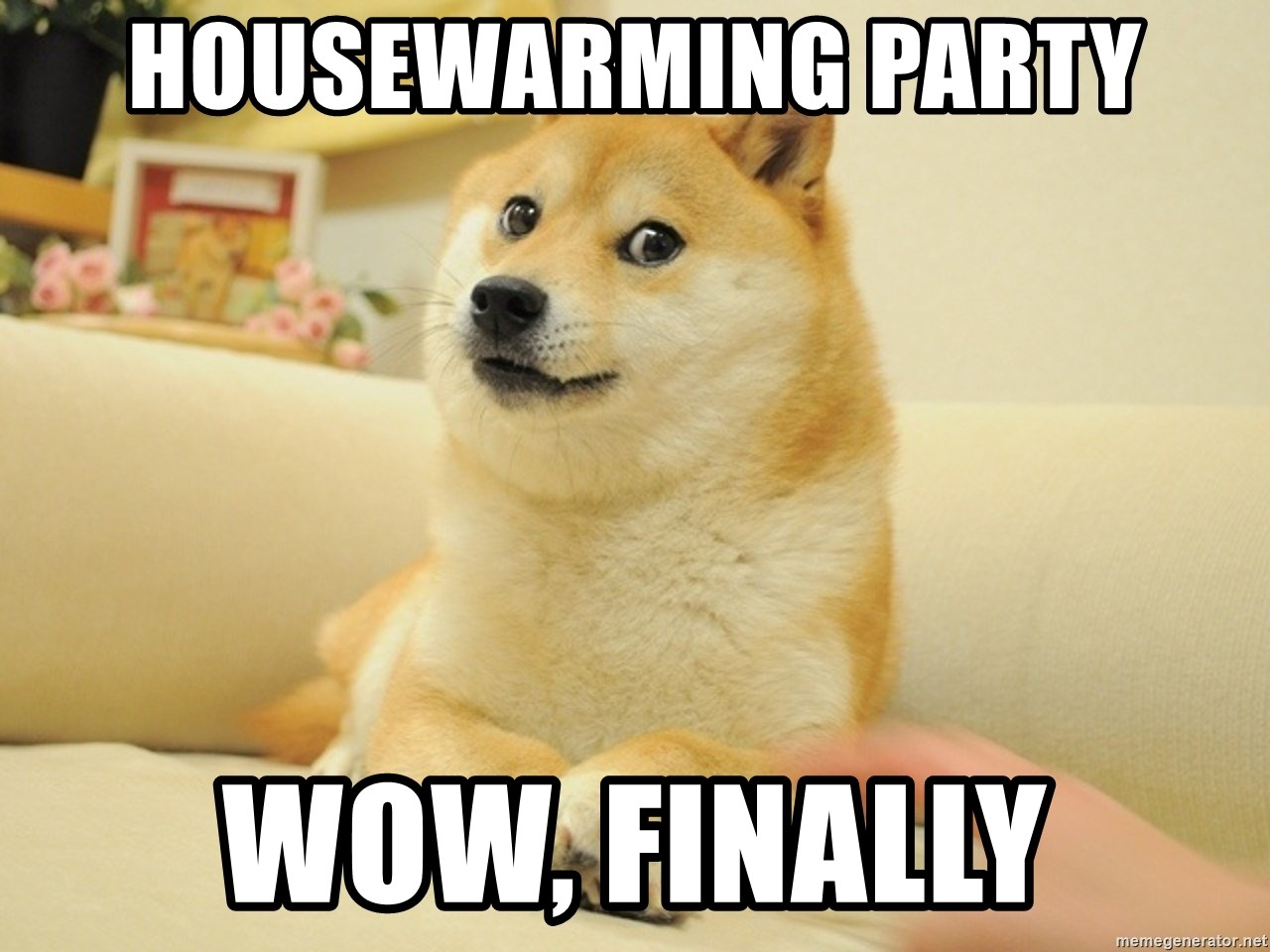 Housewarming Party Wow Finally Shiba Dog Meme Generator
