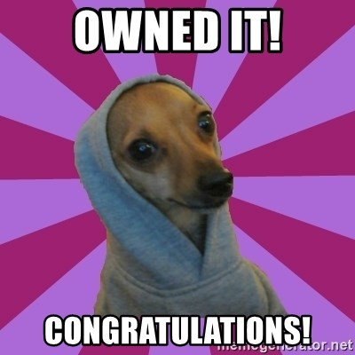 69420026 owned it! congratulations! annoying little brother chihuahua