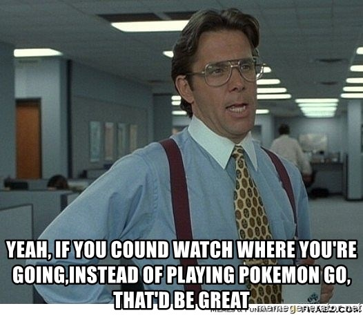 Yeah If You Could Just -   yeah, if you cound watch where you're going,instead of playing pokemon go, that'd be great