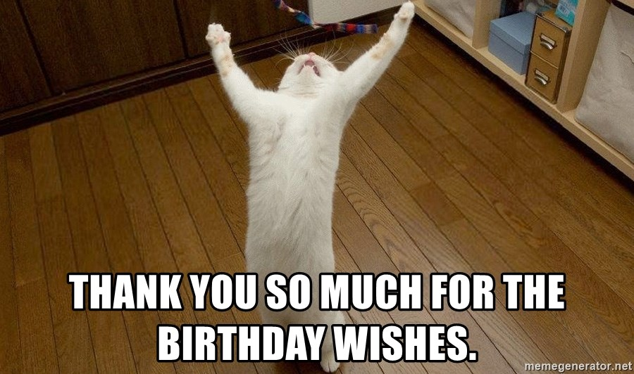 Thank You So Much For The Birthday Wishes