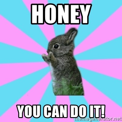 yAy FoR LifE BunNy - honey you can do it!