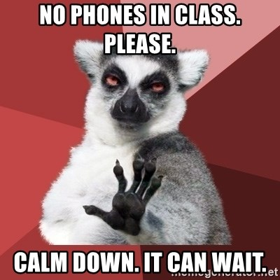 Chill Out Lemur - No phones in class. Please. Calm down. It can wait.