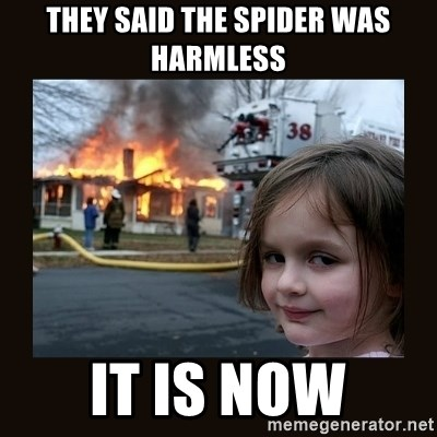 burning house girl - they said the spider was harmless it is now