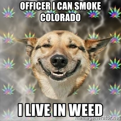 Stoner Dog - officer i can smoke colorado i live in weed