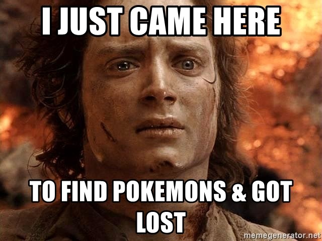 Frodo  - i just came here to find pokemons & got lost
