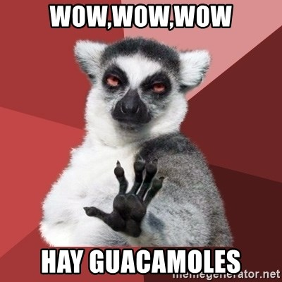Chill Out Lemur - wow,wow,wow hay guacamoles