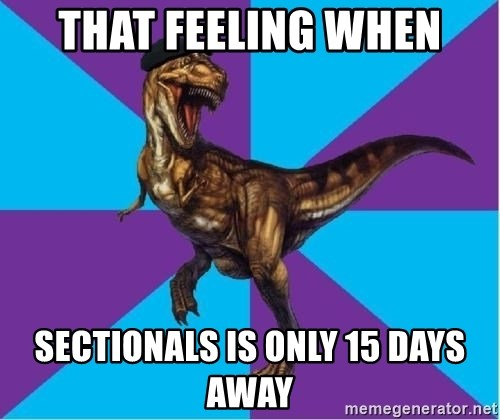 Dinosaur Director - That feeling when sectionals is only 15 days away